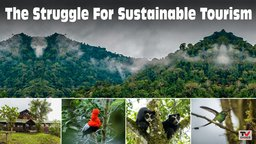The Struggle For Sustainable Tourism